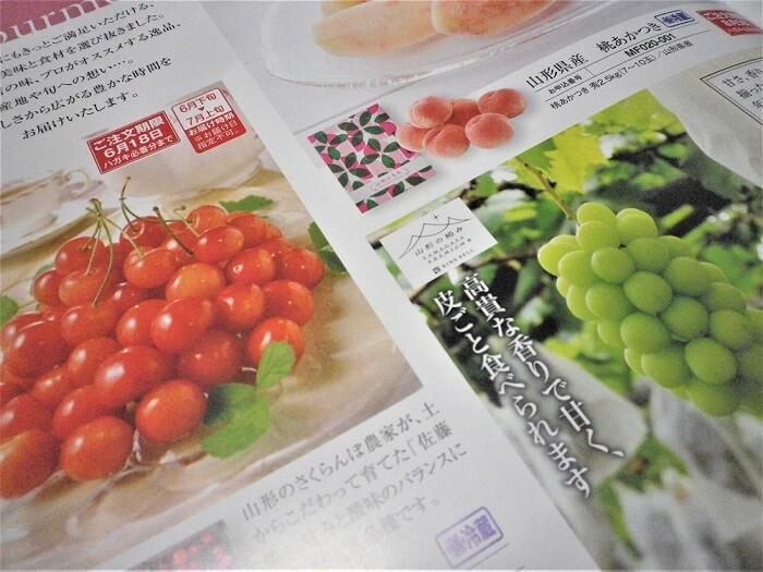 202002マクニカ富士エレホールディングス株主優待カタログ1
