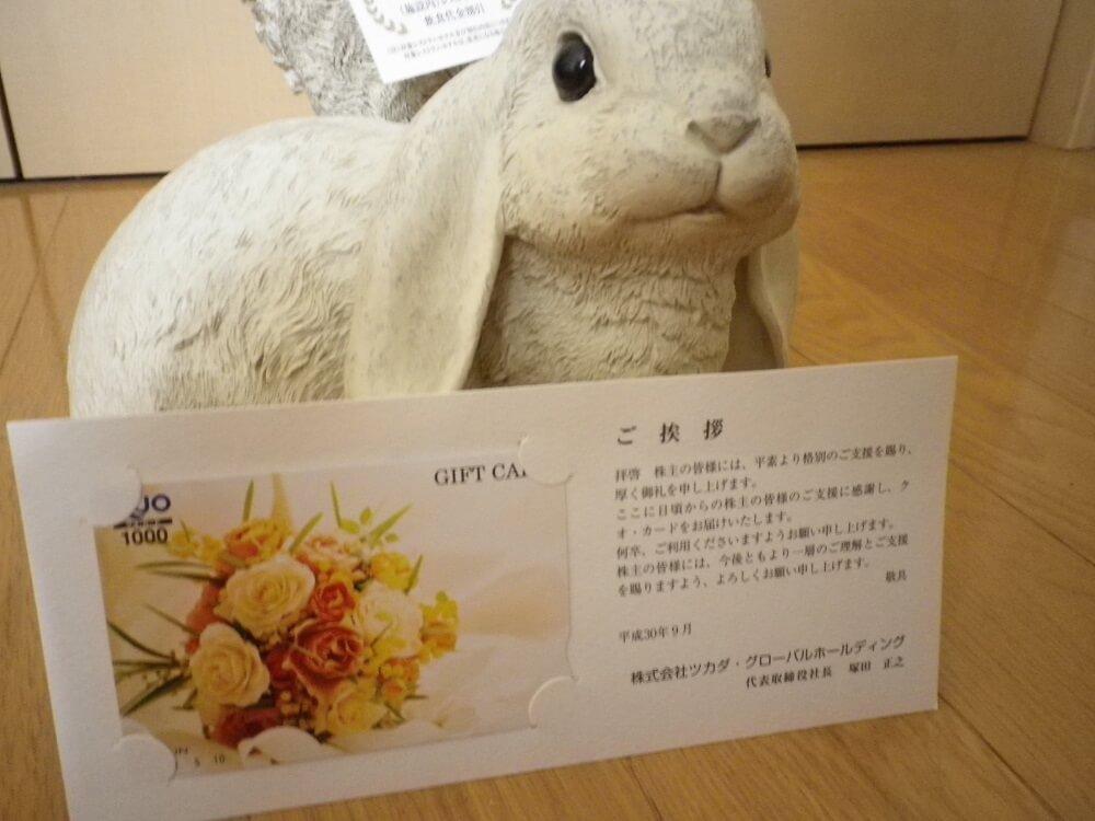 201806ツカダグローバルHD株主優待1