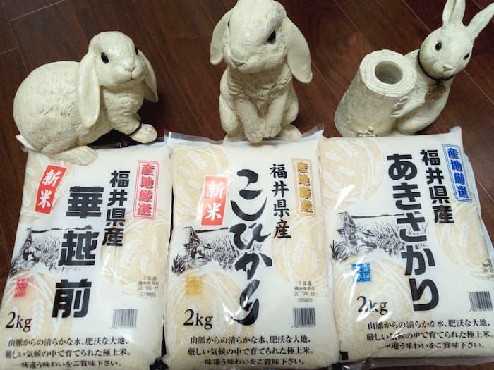 202003コロワイド株主優待米どころ福井産米三昧(3品種)