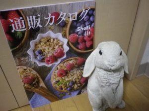 201810正栄食品工業株主優待2