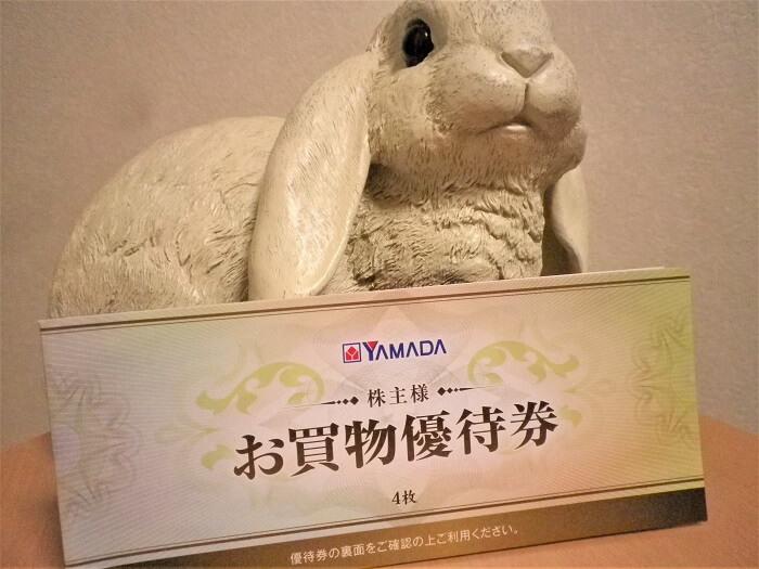 201909ヤマダ電機株主優待冊子