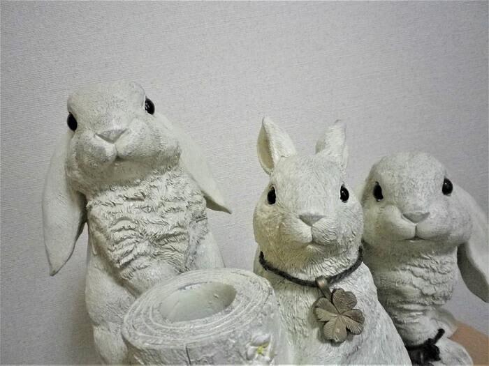 20190620Genky DrugStores株主優待カタログギフトで選んだウサギの傘立てとウサギたち2