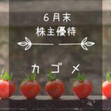 カゴメ(2811)株主優待 夢とトマトの詰まった自社製品セット♪